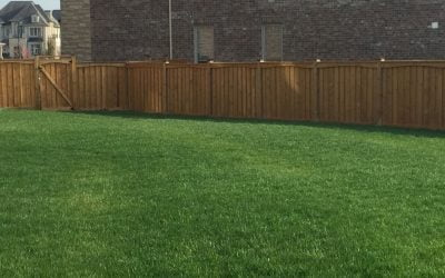 How to Choose the Best Fence Contractors