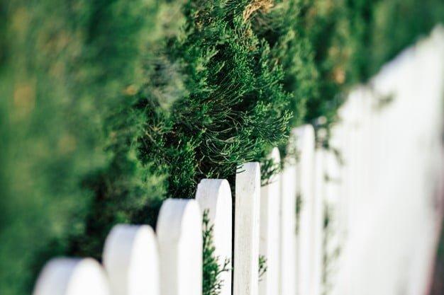 Fence Contractors In Brampton