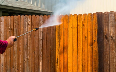 Wood Fence Maintenance Guide